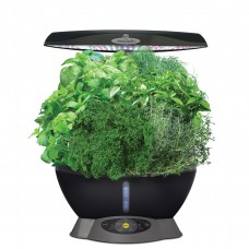 Miracle-Gro AeroGarden Classic 6 with Gourmet Herbs   565846652