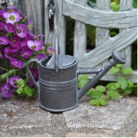 Garden Watering Can for Miniature Garden, Fairy Garden
