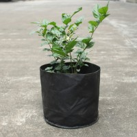 2 Gallon 5pcs Fabric Round Planter Planting Grow Bag Plant Pouch Root Pots Container, Black
