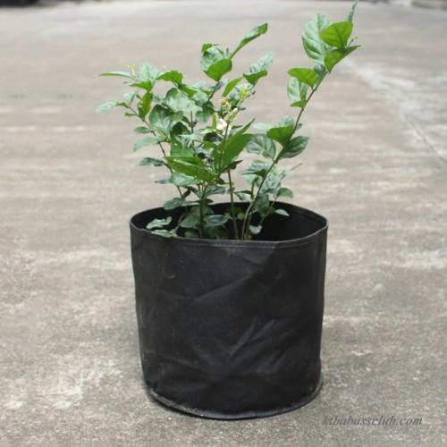 3 gallon 5pcs fabric round planter planting grow bag plant pouch root pots container black. Black Bedroom Furniture Sets. Home Design Ideas
