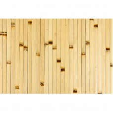 Forever Bamboo 4 x 8 ft. Bamboo Wall Paneling